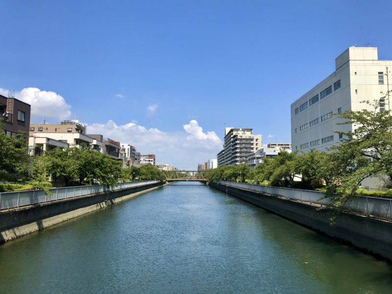 大栄橋上から北側を望む