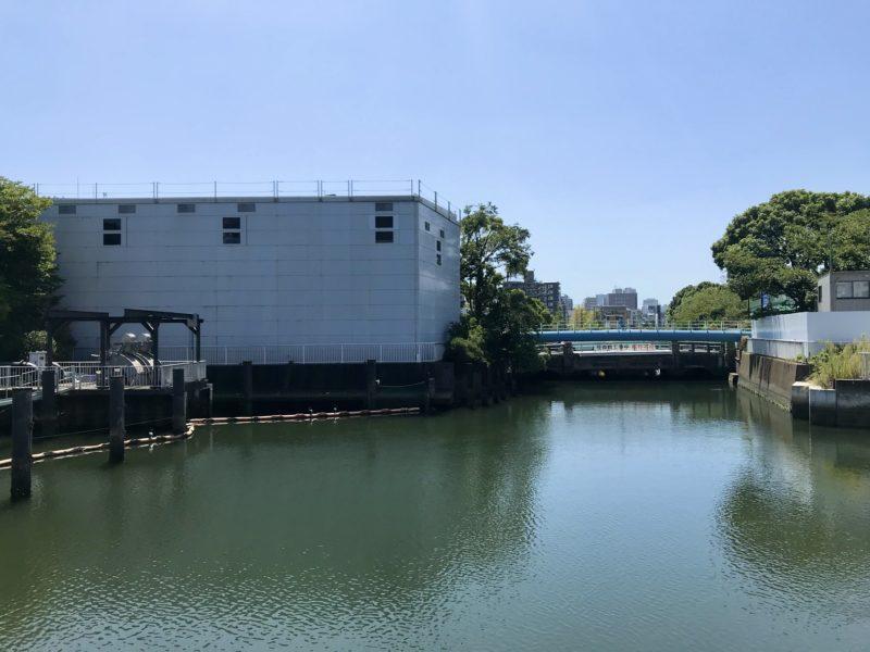 大栄橋上から南側を望む