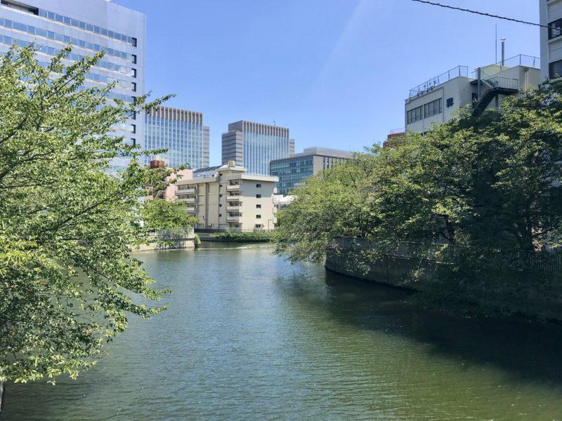 東富橋から東側を望む