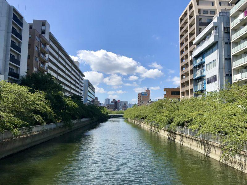 東富橋から西側を望む